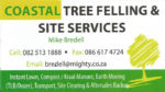 Tree Felling and Related Services South Coast KZN